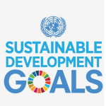 Sustainable Development Goals UN -Project Computer-literacy-skill